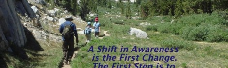 Wellness Shift: First Step